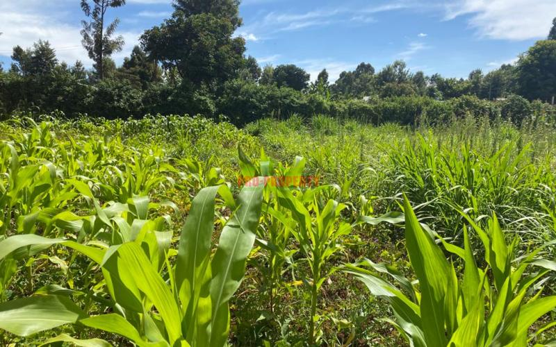 Commercial  Plot For Sale In Kikuyu Thogoto ( Southern Bypass).